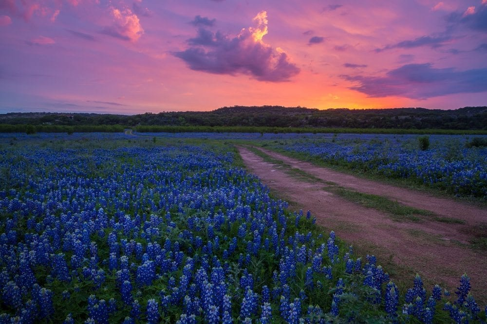 Wimberley TX, Texas Hill Country, Lodging in Texas Hill Country, Hill Country Premier Lodging, Wimberley TX cabins